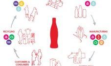 Ciclo de vida de la Coca Cola
