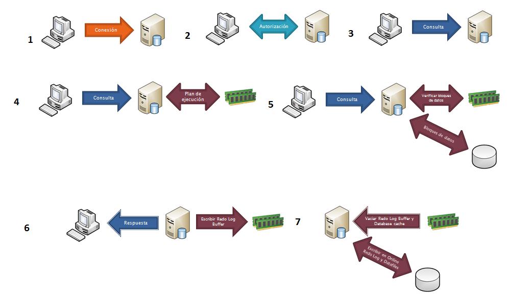 creacion base de datos